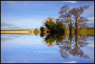 Puddles and reflections in Shefford, Bedfordshire by Karen Brammer