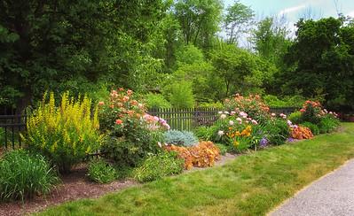 Inniswood Metro Gardens (24)-1