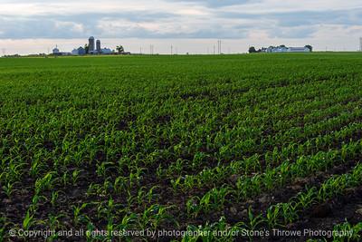 015-farm_field-ankeny-06jun21-12x08-008-400-2431