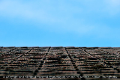 shingles-wdsm-12apr15-18x12-003-2393