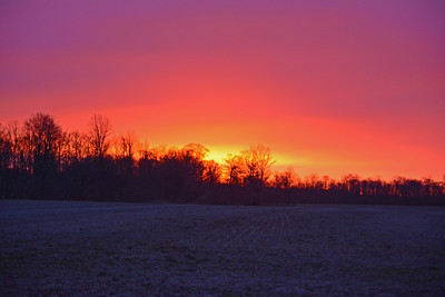 March Morning Colors