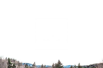 Spring Trails