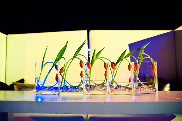 Springbox-SXSW-2011-Party-11
