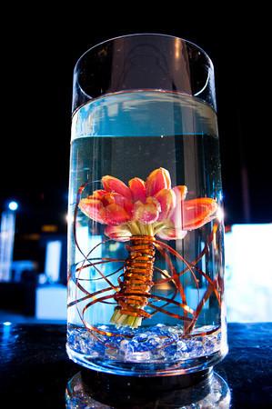 Springbox-SXSW-2011-Party-30
