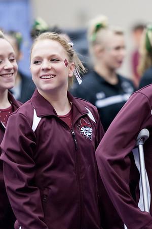 Springfield College Gymnastics 2014
