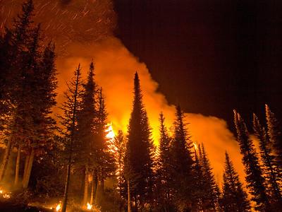 Springs Fire (ID, 2012)