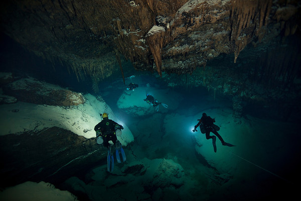 Deep Blue Cave Bermuda searching for unique cave adapted life.