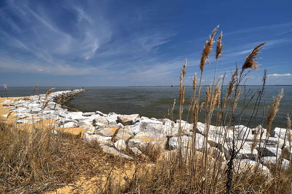 Standing Watch Over the Chesapeake
