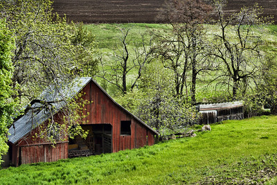 Spring Creek Barn #2