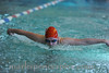 Swim R8 2010-031-F021