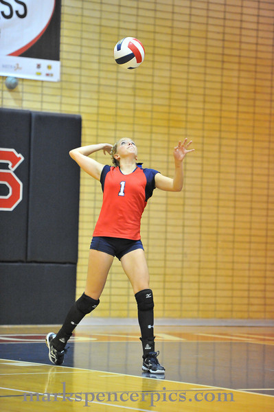 VB SV JV vs SF 2010-001