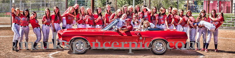SHS Softball Crazy pic 2013