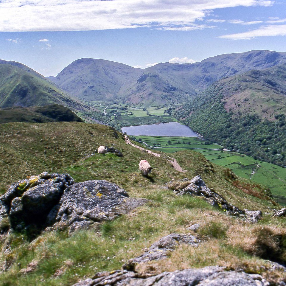 Red Screes and Brothers Water From Angle Tarn Pikes