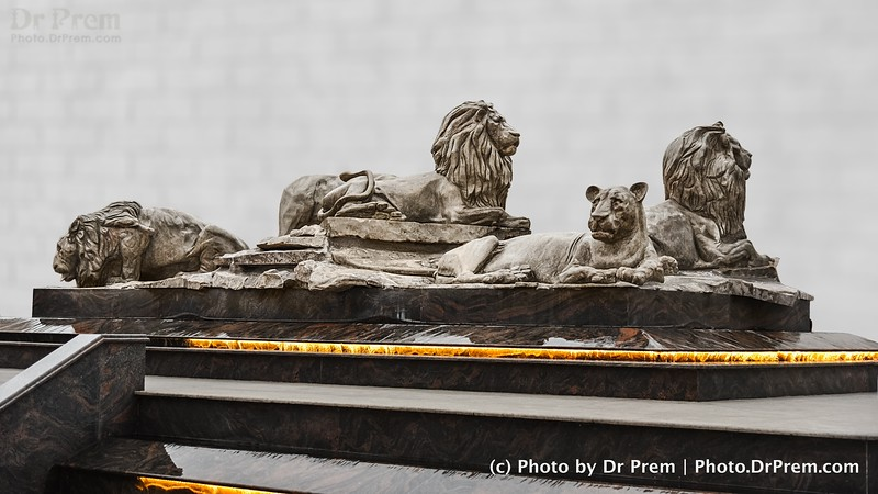 The Lions Of Lanka