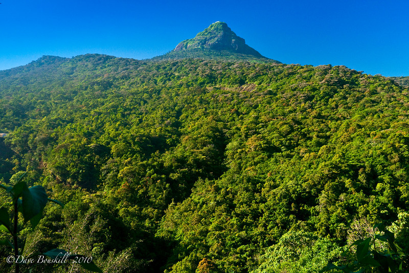 Adams-Peak-Sri Lanka-Bottom