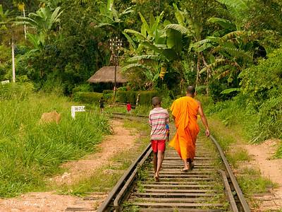 Ella rock and Nuwara Eliya Tea Plantations, Sri Lanka