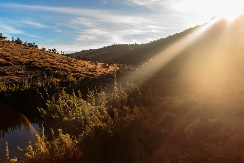 Sunrise in Horton's Plain
