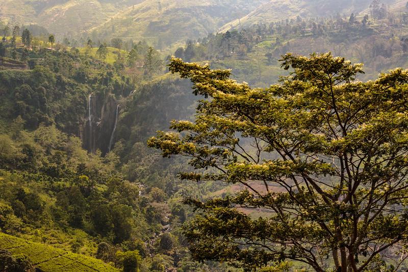 Sri Lankan Waterfall