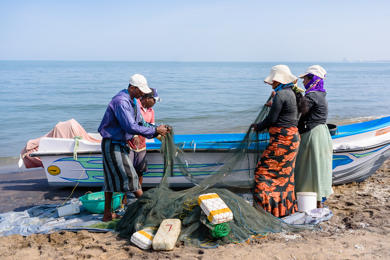 Cleaning the Nets