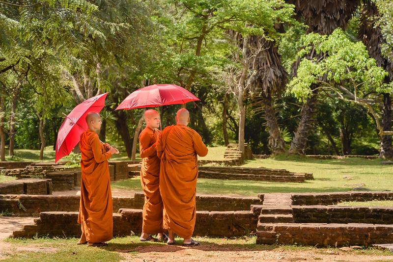 Under the Red Umbrellas