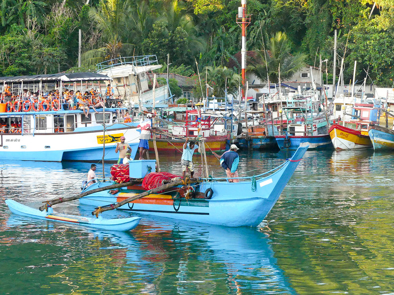 The many fishing boats and the whale watching boats getting read to depart at the Mirissa Fisheries Harbour.