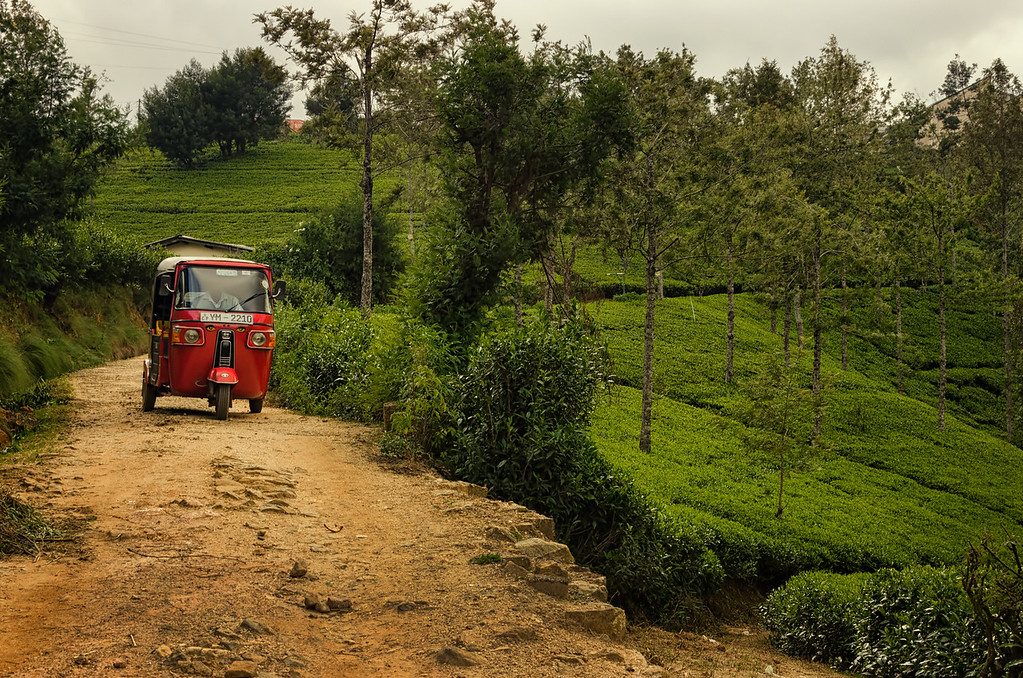 Little Red Tuk Tuk
