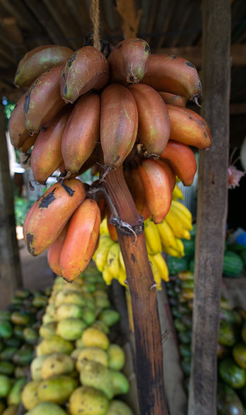 Red bananas, Dambulla