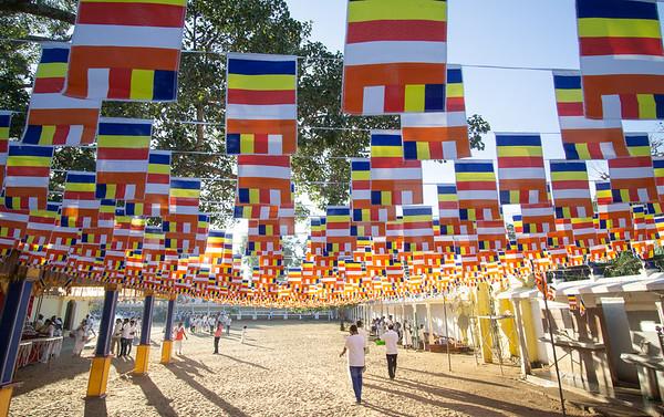 Buddhist Flags at Kataragama