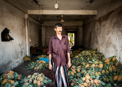 The Pineapple man selling his fruit, Induwura, Sri Lanka