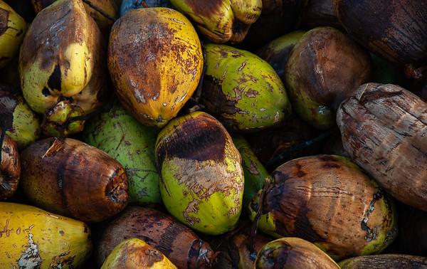 Harvested Coconuts waiting for transport, Sri Lanka, 2007