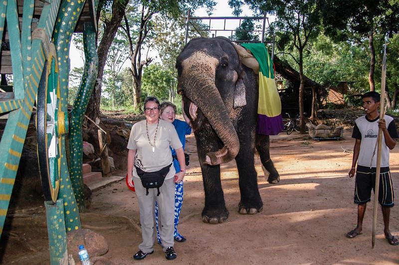 Habarana elephant and jeep trek, Sri Lanka