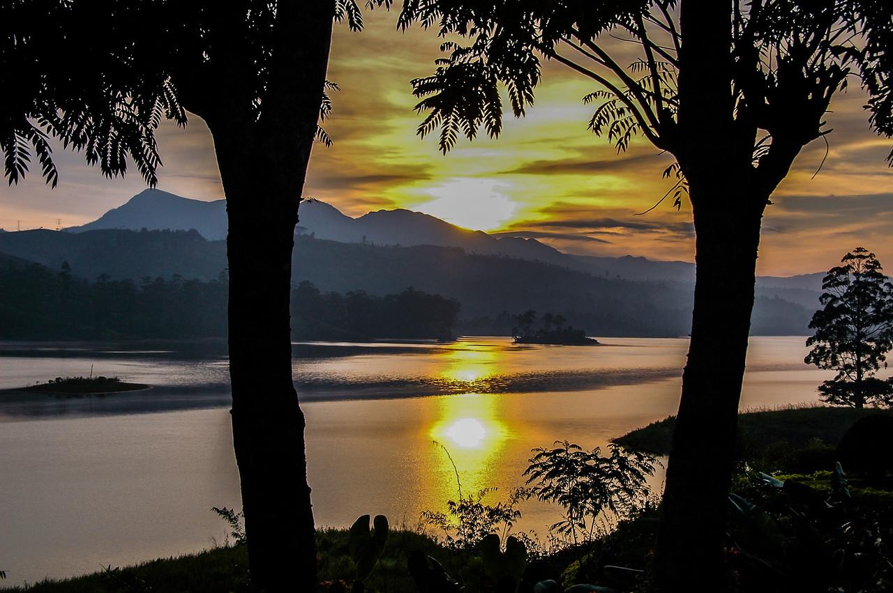 Tea Trails Estate Grounds, Sri Lanka