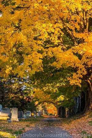 Greenwood Cemetary, St. Albans Vermont Fall 2016
