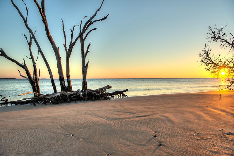 driftwood sunrise2