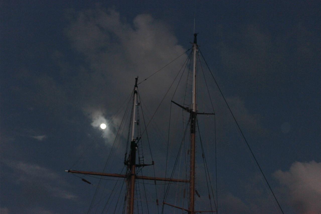 Moonlit Masts