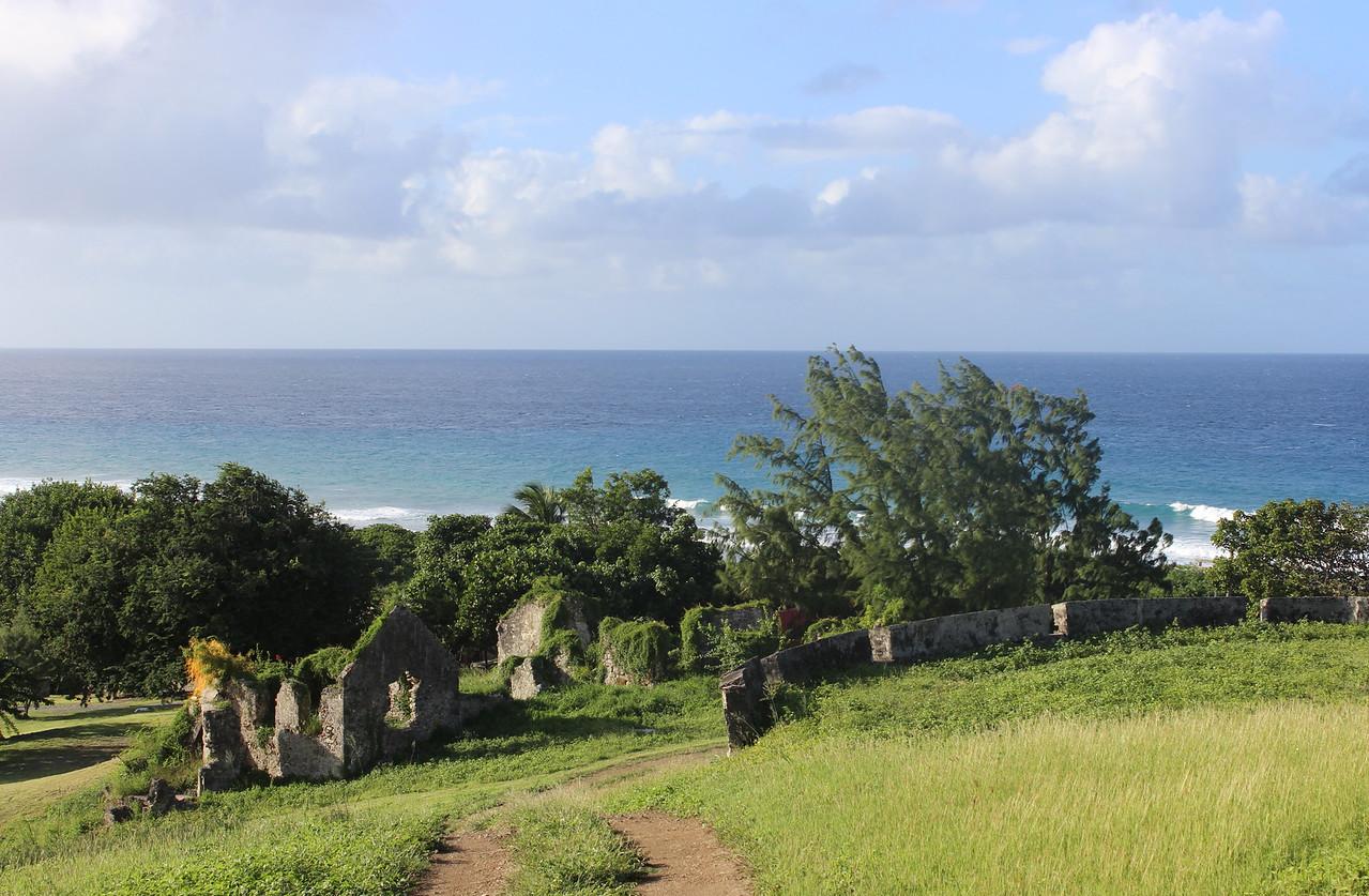 Caribbean Sea Vista