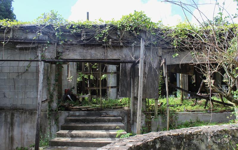 Domino Club Ruins