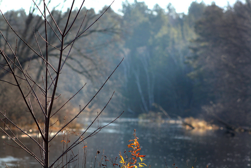 """Peaceful River"" by Willie, 13 