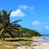 Salt River Bay Ecological Preserve