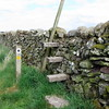 Going in stile