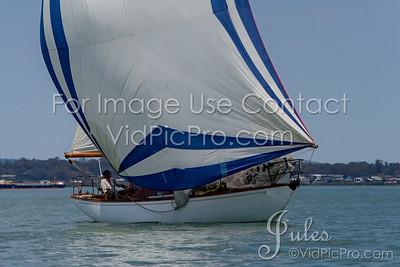 STHC17  Start Mono Jules VidPicPro com-3206-2