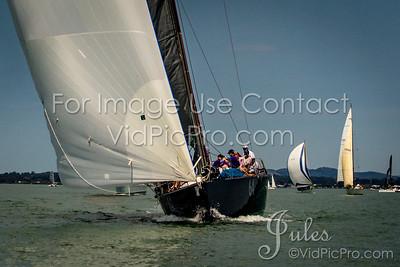 STHC17  Start Mono Jules VidPicPro com-3221