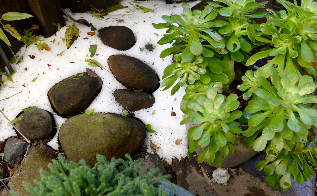 . Hail remains piled up in a shady area of the yard seen during a tour of the garden at Ruth Guzley\'s residence in Chico, Calif. Friday April 14, 2017. This is one of the gardens that will be featured during the St. John Episcopal Church Garden Tour.  (Bill Husa -- Enterprise-Record)