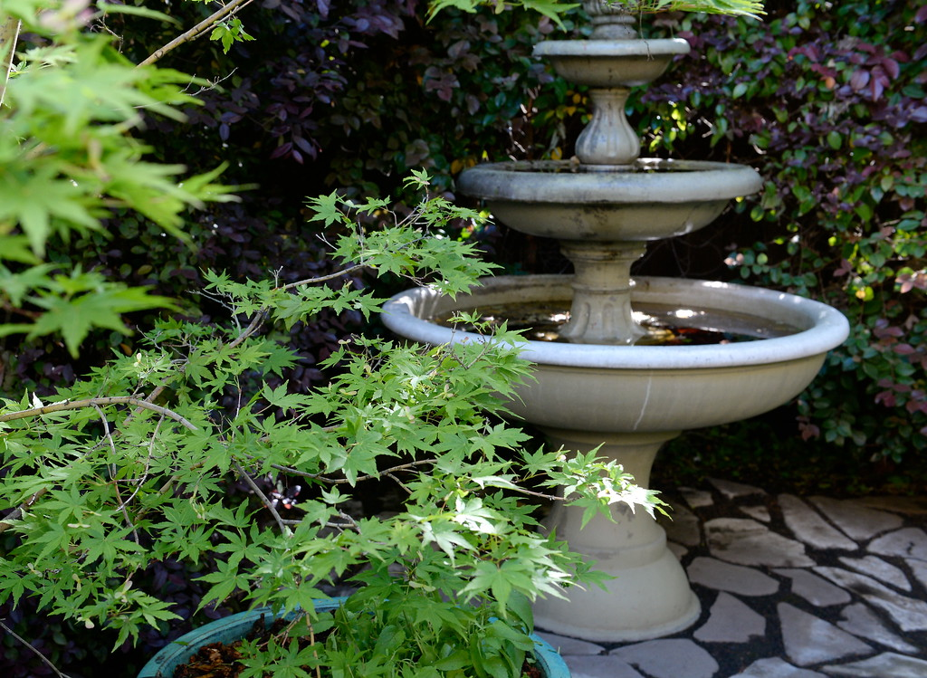 . A fountain is seen near the front entrance during a tour of the garden at Ruth Guzley\'s residence in Chico, Calif. Friday April 14, 2017. This is one of the gardens that will be featured during the St. John Episcopal Church Garden Tour.  (Bill Husa -- Enterprise-Record)