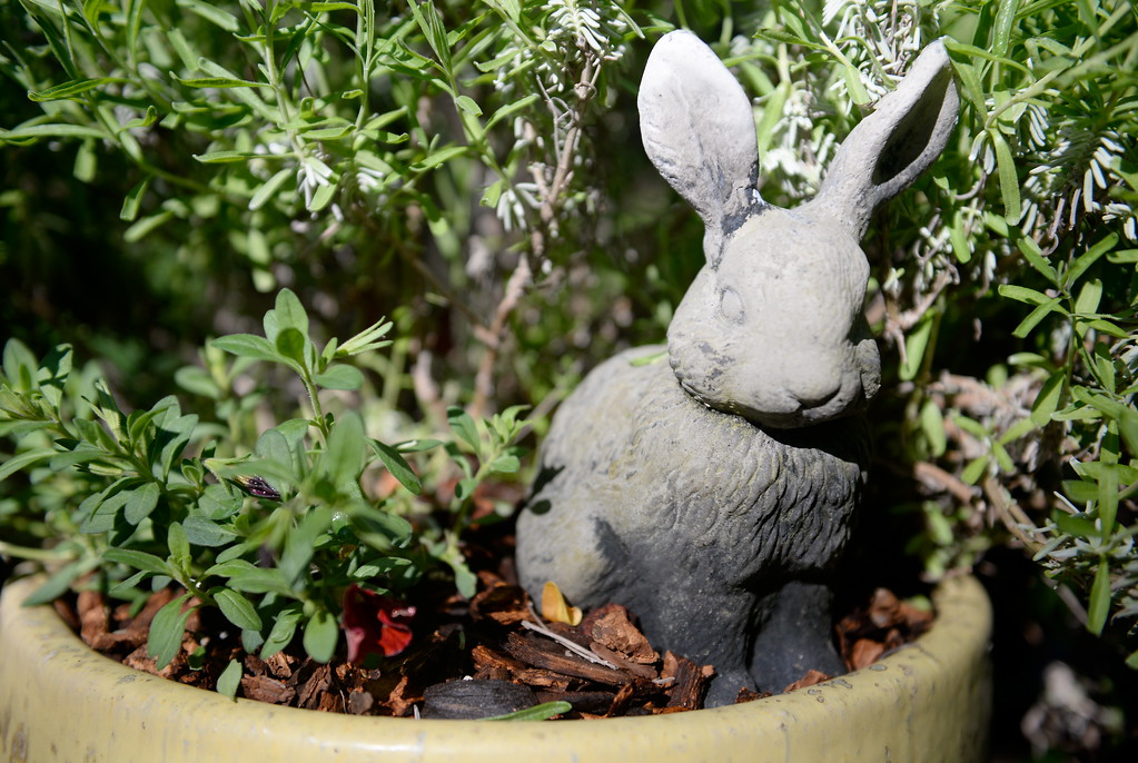 A Rabbit Statue Is Seen During A Tour Of The Garden At Ruth Guzley\