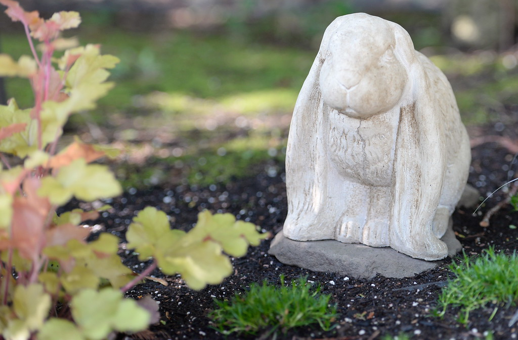 . A rabbit statue is seen during a tour of the garden at Ruth Guzley\'s residence in Chico, Calif. Friday April 14, 2017. This is one of the gardens that will be featured during the St. John Episcopal Church Garden Tour.  (Bill Husa -- Enterprise-Record)
