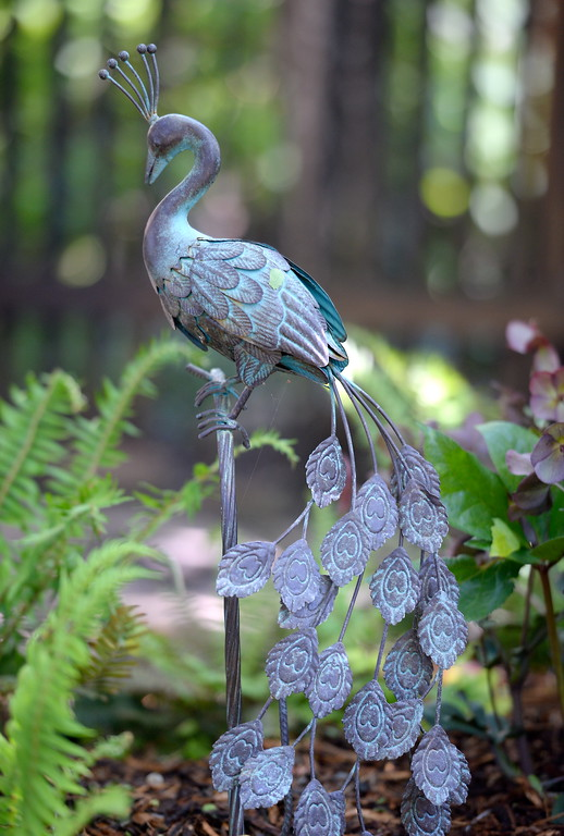 . A metal peacock sculpture is seen during a tour of the garden at Ruth Guzley\'s residence in Chico, Calif. Friday April 14, 2017. This is one of the gardens that will be featured during the St. John Episcopal Church Garden Tour.  (Bill Husa -- Enterprise-Record)