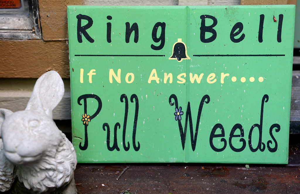 """. A funny sign that says \""""Ring Bell, If no answer, Pull Weeds\"""" is seen near the front porch during a tour of the garden at Ruth Guzley\'s residence in Chico, Calif. Friday April 14, 2017. This is one of the gardens that will be featured during the St. John Episcopal Church Garden Tour.  (Bill Husa -- Enterprise-Record)"""