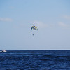 Paragliders!