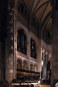Morning Light in the Cathedral